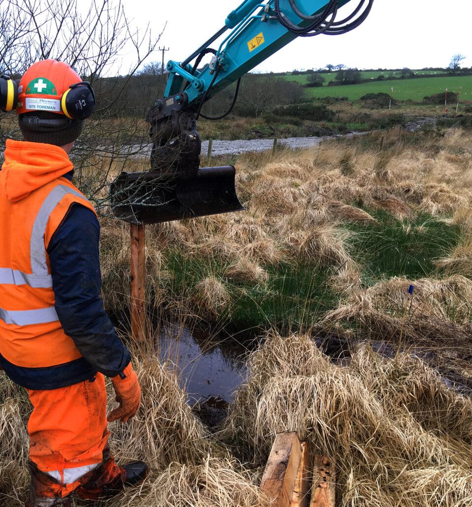 peatland restoration close up