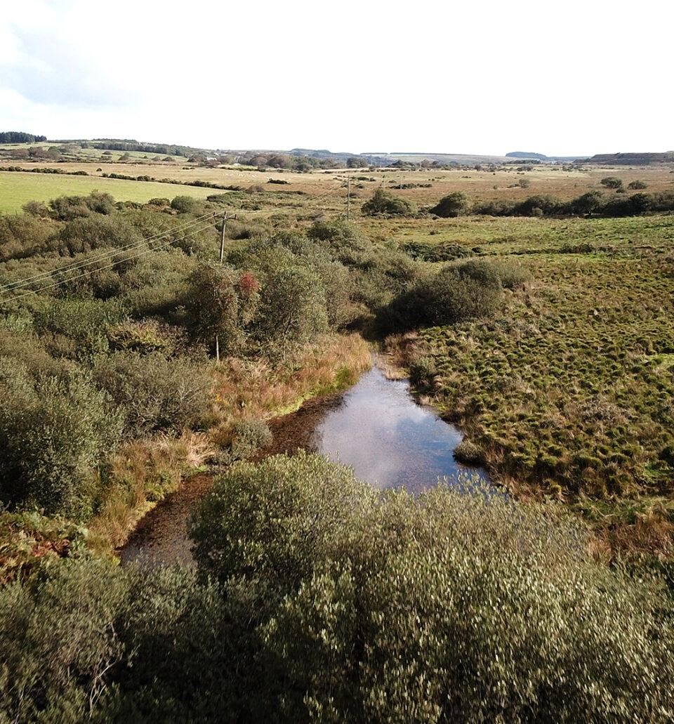 What is Peatland Restoration?